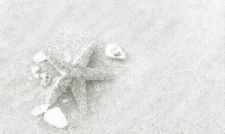 035 | STAR SEA