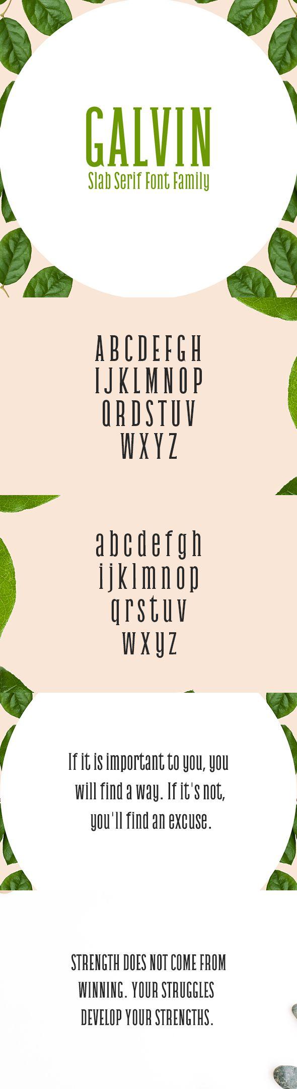 Galvin Slab Serif 5 Font Family Pack - Sans-Serif Fonts