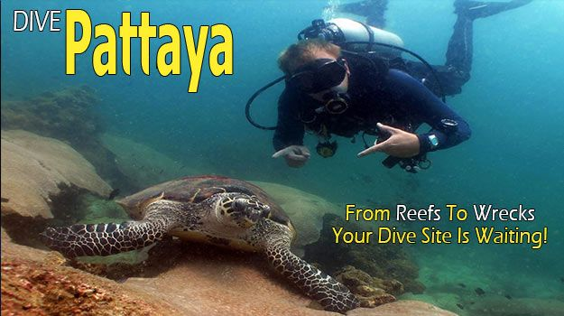 Pattaya Dive Centre Run 3 Boats For Pattaya Dive Trips Diving Pattaya and Samae San Islands, Coral & Wreck Dives for All Levels. See Details and Prices