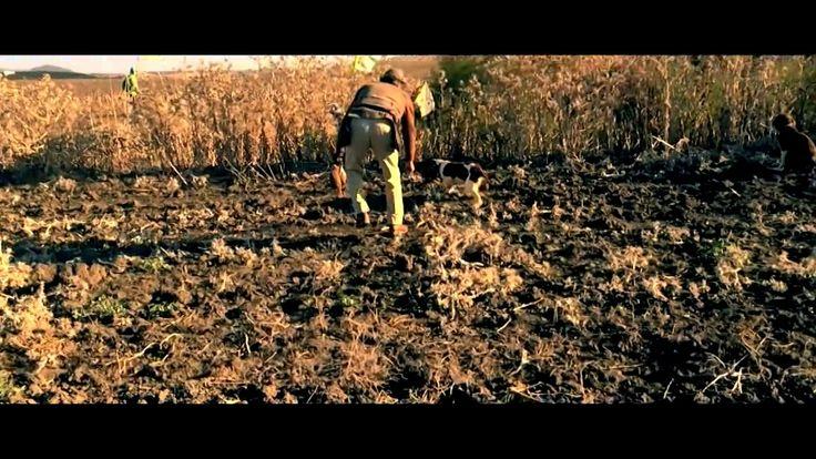 Partridge hunting day with Grupo Salto al Cielo, Jerez de la Frontera on Vimeo