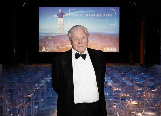 Famed naturalist and broadcaster Sir David Attenborough has announced his concerns for Australia's Great Barrier Reef