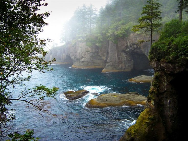 The Cape Trail near Neah Bay