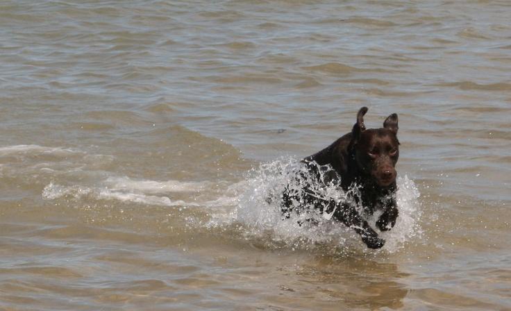 Yasmine in the sea