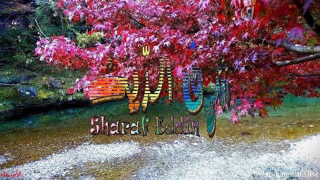 معنى اسم شرف الدين وصفات حامل هذا الاسم Sharaf Eddin Art Painting