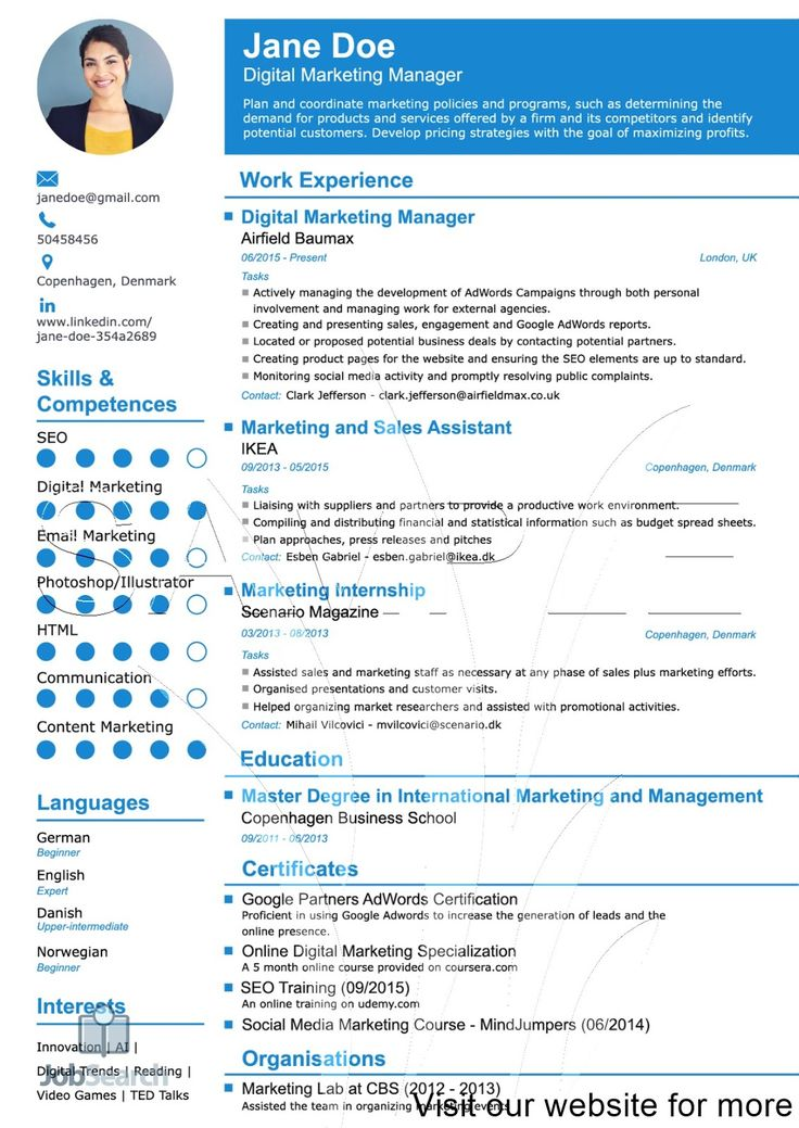 Digital marketing manager 2020 work experience sample