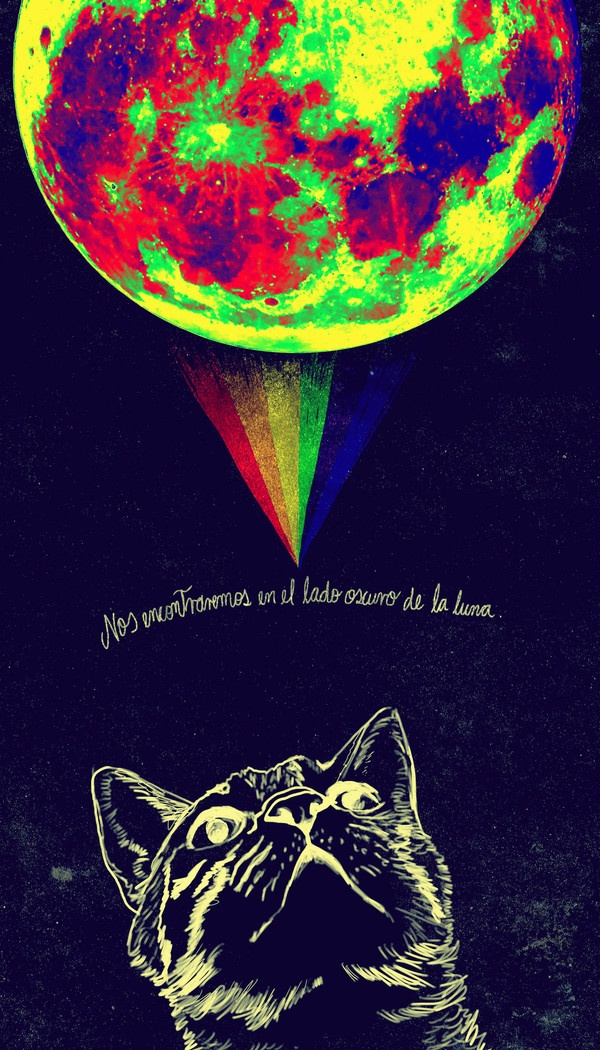 Dark side of the moon: Cat Side, Cat Astrophi