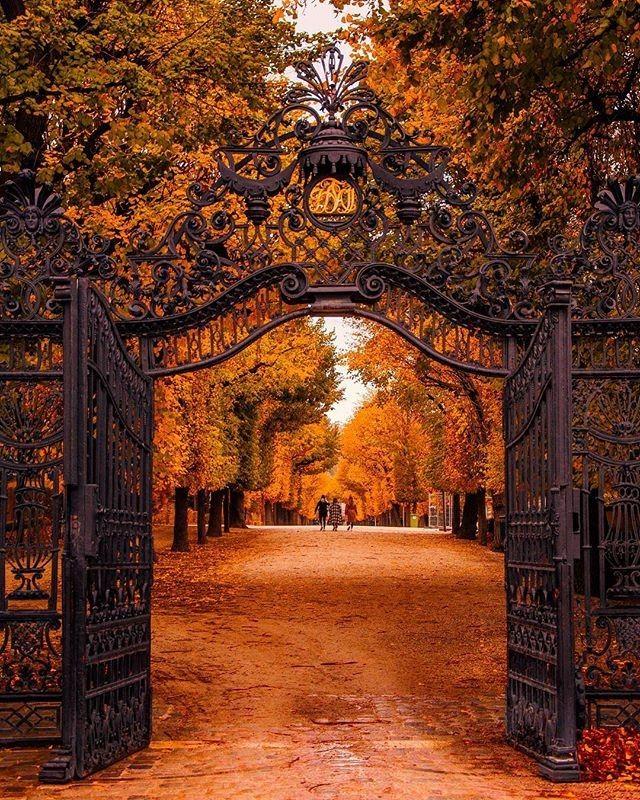 Gehen Sie in Montag! #feelaustria #viennanow # schönbrunn #palacegarden #autumnmood Bild von @clemensnimmersatt