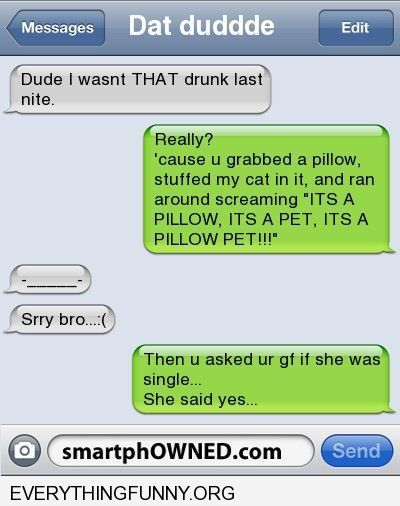 funny text message i wasn't that drunk put my cat in a bag swung it around