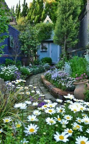 ブレーカー&小道ガーデン | ようこそブルーガーデンへ - 楽天ブログ