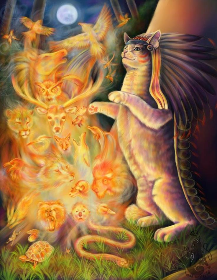 13+ Cat spirit animal meaning images