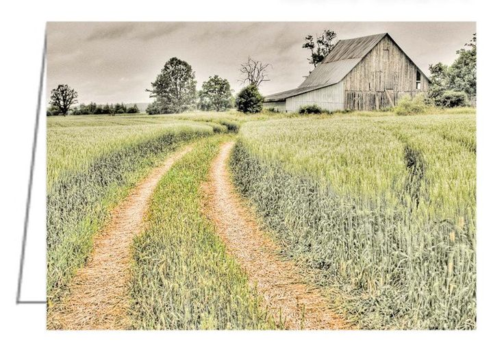 Farm on Diamondview Road - Greeting Card. Daimondview Road is in the Ottawa Valley, not far from Kinburn, Ontario.