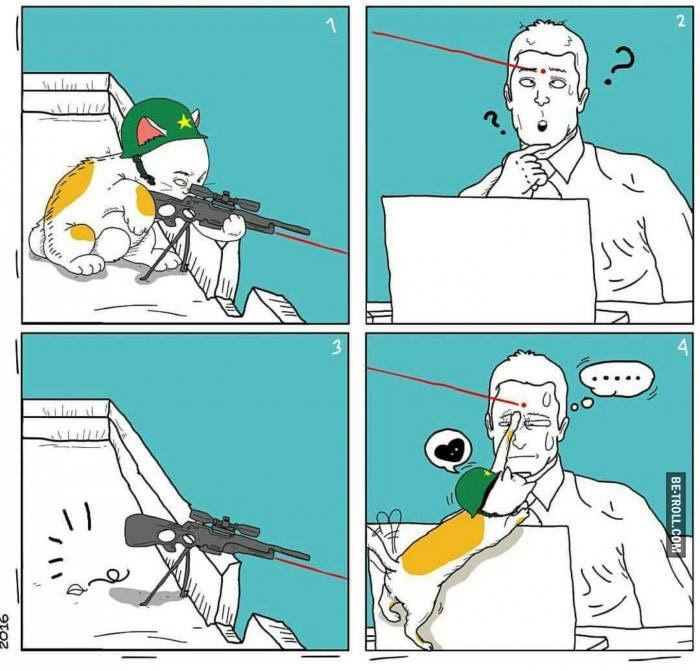 Quand un chat tente d'utiliser un sniper avec visée laser...