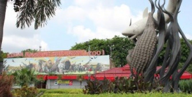 Surabaya Zoo from indonesia
