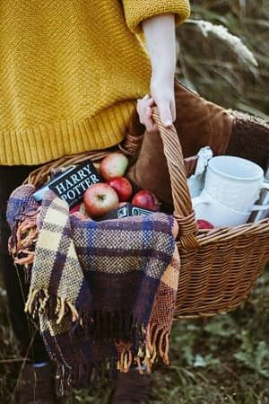 ピクニック・かごボックスやおしゃれひざ掛けアイディア