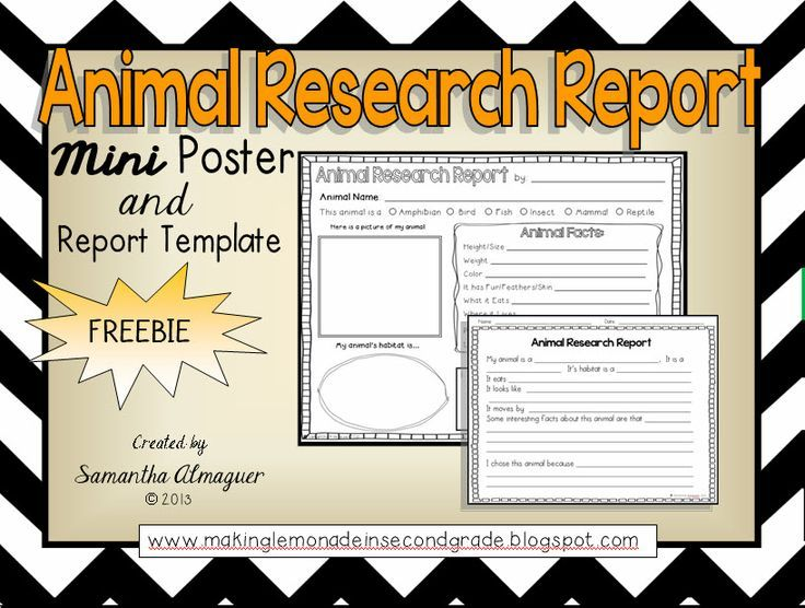 11 best Fieldtrip Learning images on Pinterest School, Animal - animal report template example