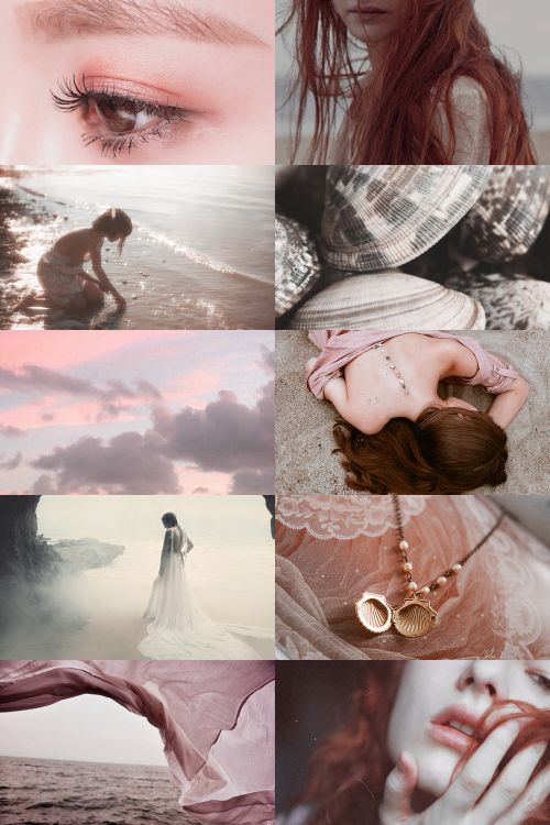 birth of venus aesthetic