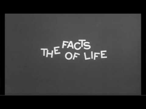 """The Facts of Life"" (1960) , directed by Melvin Frank, starring Bob Hope and Lucille Ball."