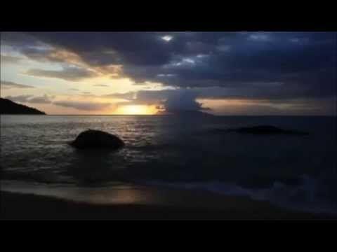 Alan Watts - Senso comune - YouTube