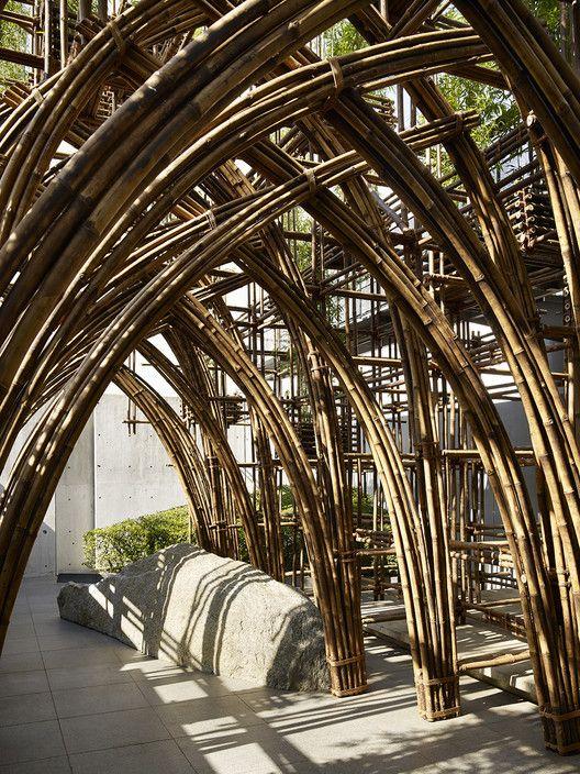 Floresta de Bambu,© Yoshifumi Moriya