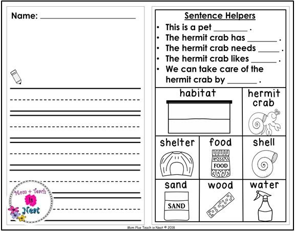 Kindergarten Journal Writing Prompts Differentiated Set 8 Pet Hermit Crab Journal Writing Prompts Kindergarten Writing Journals Kindergarten Journal Writing Prompts