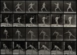 A javelin thrower. Photogravure after Eadweard Muybridge, 18. More abbout Muybridge and his photographic attempts to capture motion at http://blog.europeana.eu/2012/04/the-science-of-movement-eadweard-muybridge/