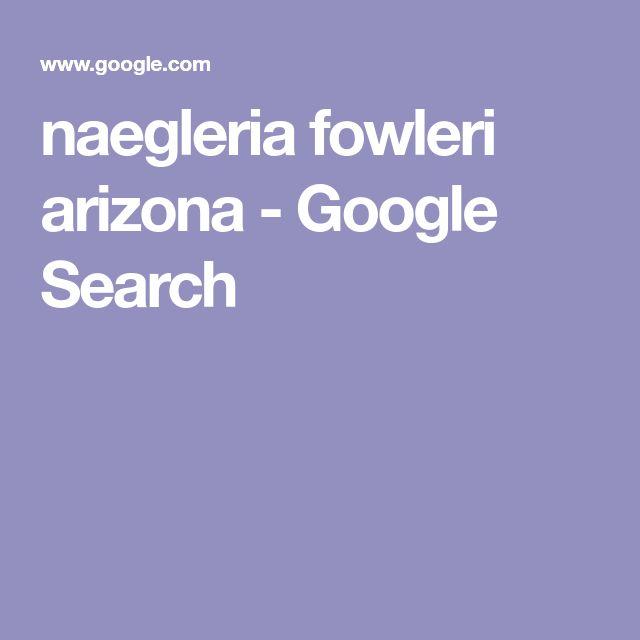 naegleria fowleri essay La map destruye en forma rápida el tejido cerebral por el accionar de la  naegleria fowleri, una ameba que está presente en todo el mundo,.