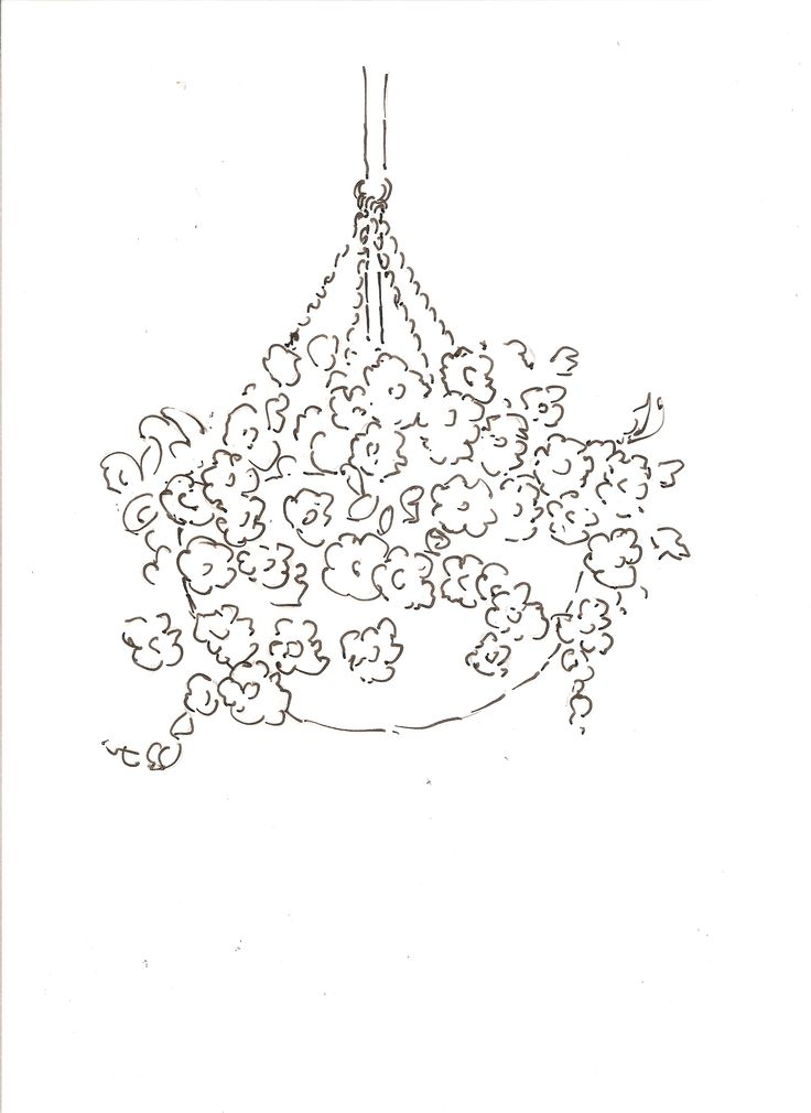 Flower Basket Line Drawing : Best art b w images on pinterest doodles to draw