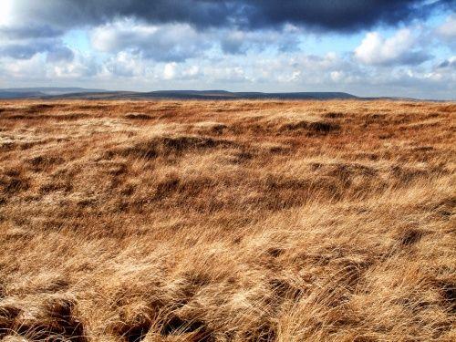 Blackstone Edge Moor, Ripponden.