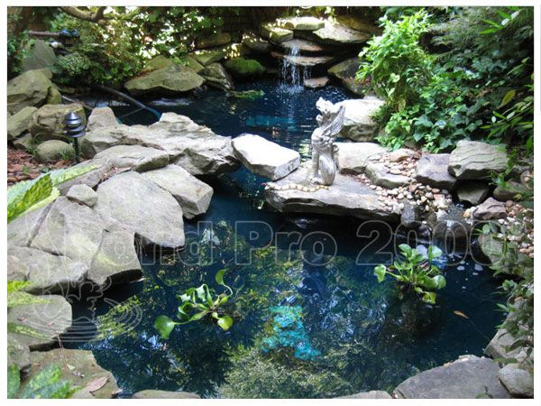 1000 Ideas About Epdm Pond Liner On Pinterest Pond