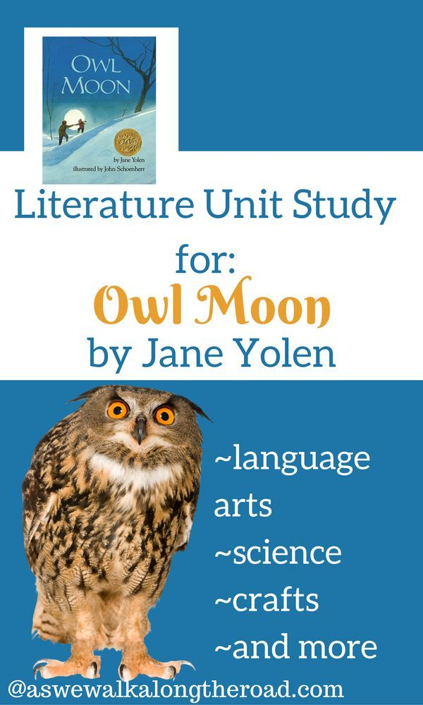 This literature unit study for Owl Moon includes language arts activities, learning about owls, crafts, a booklist and FREE printables.