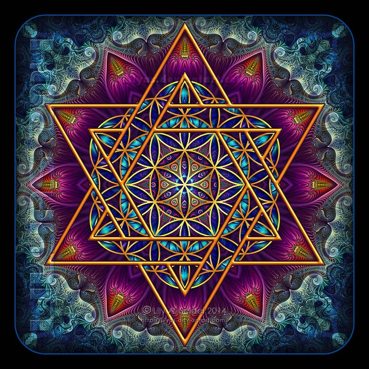 Flower of Life Fractal Star of David by Lilyas ( Lily) ---> Great tools for light-workers.. Flower of Life T-Shirts, V-necks, Sweaters, Hoodies & More ONLY 13$ EACH! LIMITED TIME CLICK THE PIC