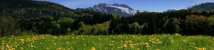 Aschau im Chiemgau - Sachrang - Chiemgau - Urlaub in der Ferienregion am Chiemsee, Bayern