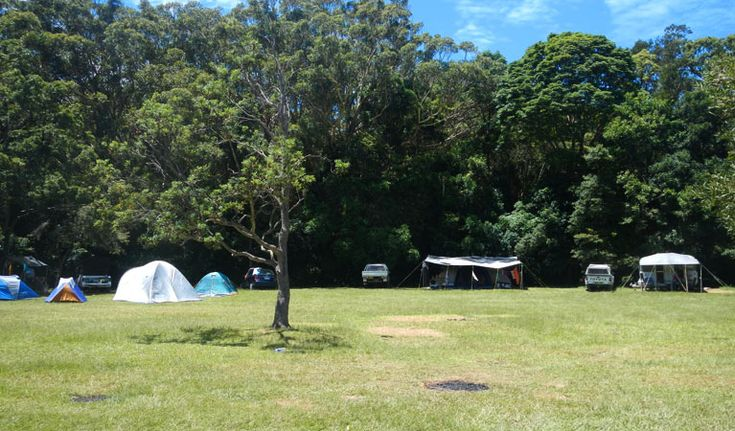 Indian Head campground // Crowdy Bay National Park