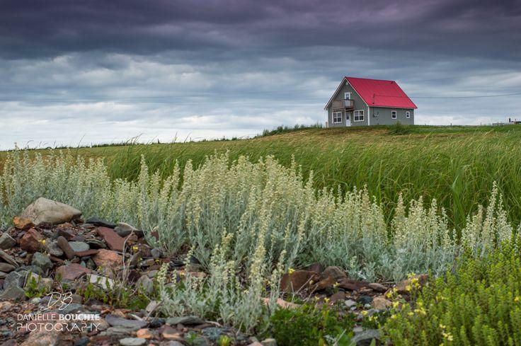 Cape Jack, Nova Scotia https://www.facebook.com/daniellebouchiephotography/