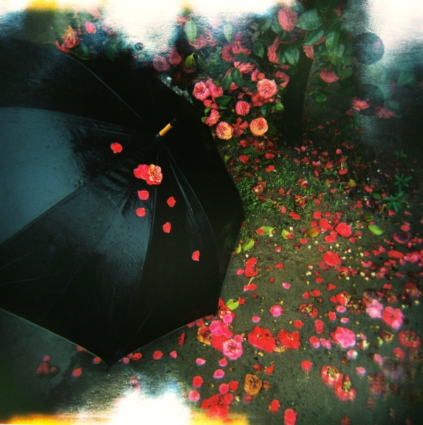 Rainy Day by oneye fish