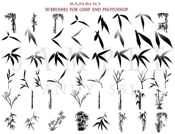 Bamboo 50 Photoshop brushes for GIMP and by AszArt on Etsy