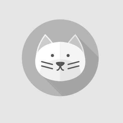 """273985 Chat perdu """"spider"""" Perdu chat, gris, mâle, poils courts, pelage tigré. Perdu le 04/10/2016 45450 FAY AUX LOGES (FR)."""