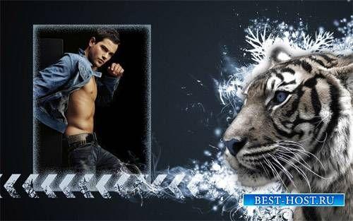 Календарь 2015 - Рычание тигра