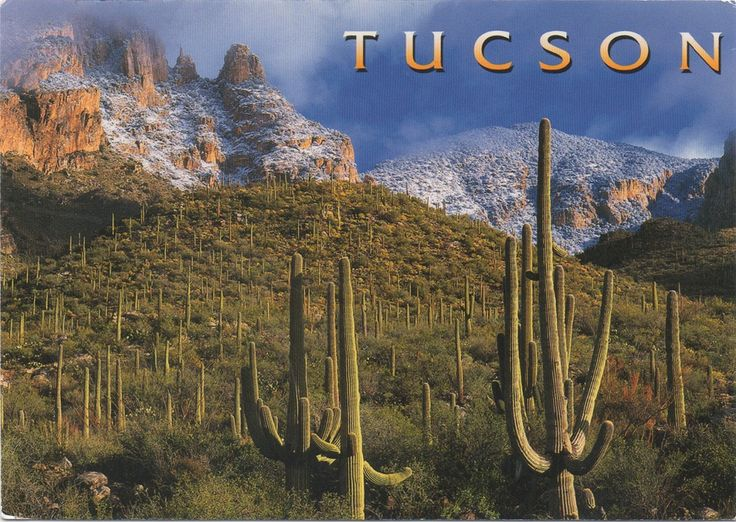 US-4895987- Arrived: 2017.09.28   ---   The Santa Catalina Mountains are north and northeast of Tucson in Arizona, United States, on Tucson's north perimeter. The mountain range is the most prominent in the Tucson area, with the highest average elevation. The highest point in the Catalinas is Mount Lemmon at an elevation of 2.791 m above sea level and receives 180 460 cm of snow annually.