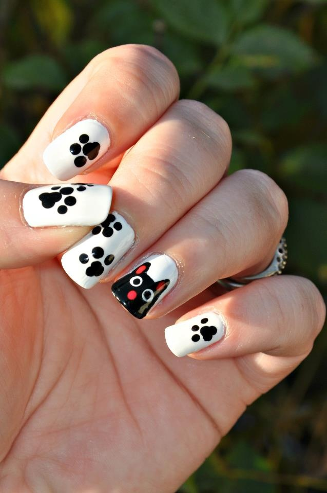 Paw prints and a cat