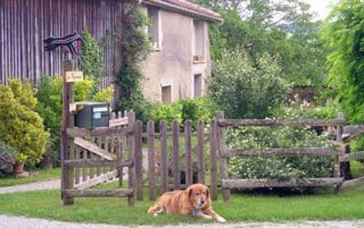Chambres d'hôtes à vendre à Puivert dans l'Aude