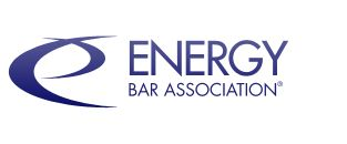 I'm very excited to tune in to the Energy Bar Association's webinar on leading transactional issues under section 203 of the Federal Power Act.