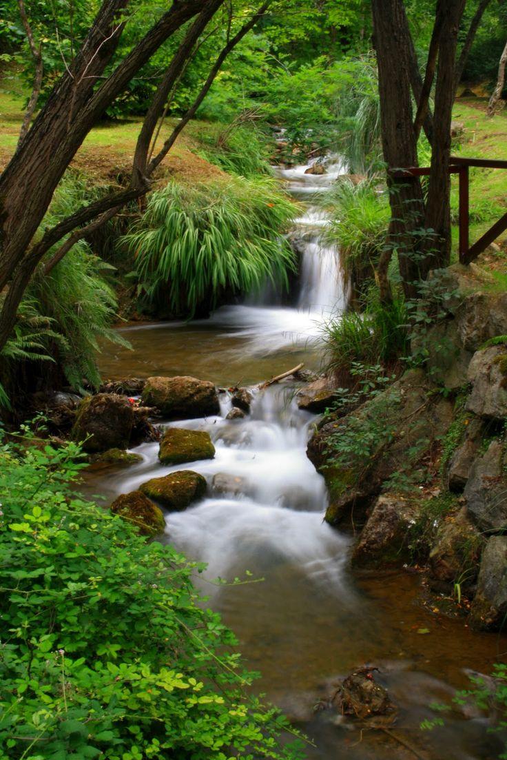 Parque de La Viesca #Cantabria #Spain                                                                                                                                                                                 Más