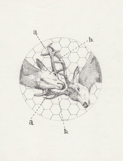 Art & Science Journal