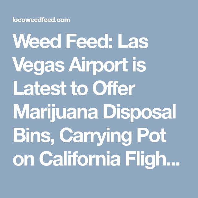 Weed Feed: Las Vegas Airport is Latest to Offer Marijuana Disposal Bins, Carrying Pot on California Flights Still a Gray Area | Lost Coast Outpost | Humboldt County