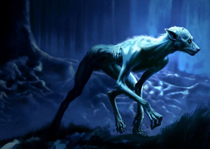 17 best images about �� lycans claws and bloody �� on