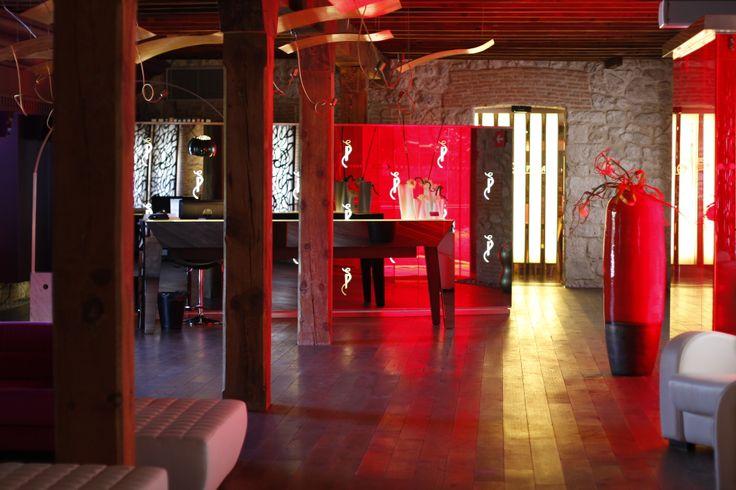 Temathic wine hotel in Ribera del Duero.