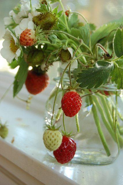 jar full of strawberries   elseachelsea