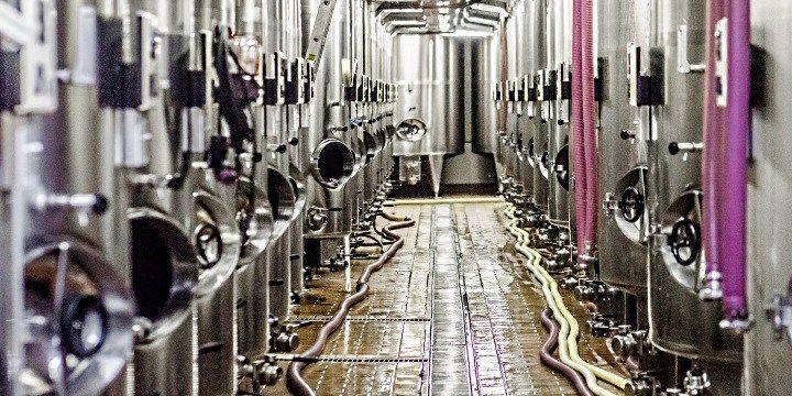vinjournalen.se -  Vin Fakta : Hur gör man egentligen Champagne? |  Hos familjeproducenten Gosset i Epernay, den äldsta vingården i Champagne, har man tillverkat viner sedan 1584, då Pierre Gosset startade som vinodlare och gjorde främst röda viner från egna vinstockar. Kungahuset i Frankrike var på den tiden särskilt imponerade av hans viner som gjordes på druvo... http://wp.me/p73gTR-37G