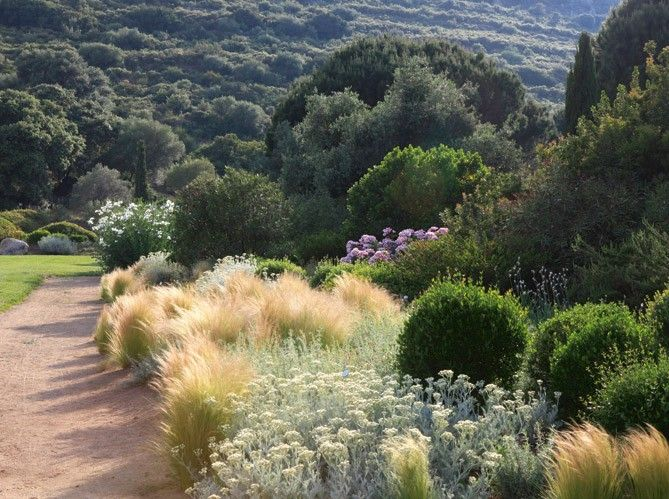 Un jardin dans le maquis Corse